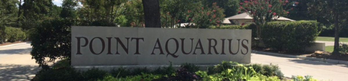 Point Aquarius